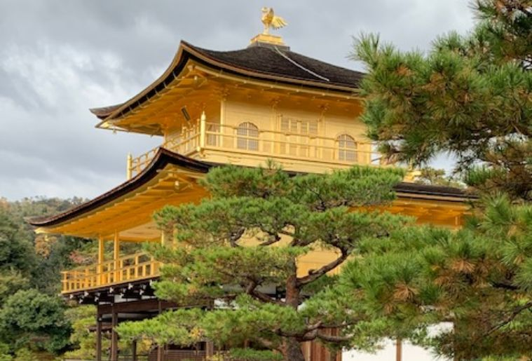 Food and Sake Adventures in ancient Kyoto