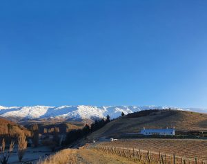Winter at Domaine Thomson