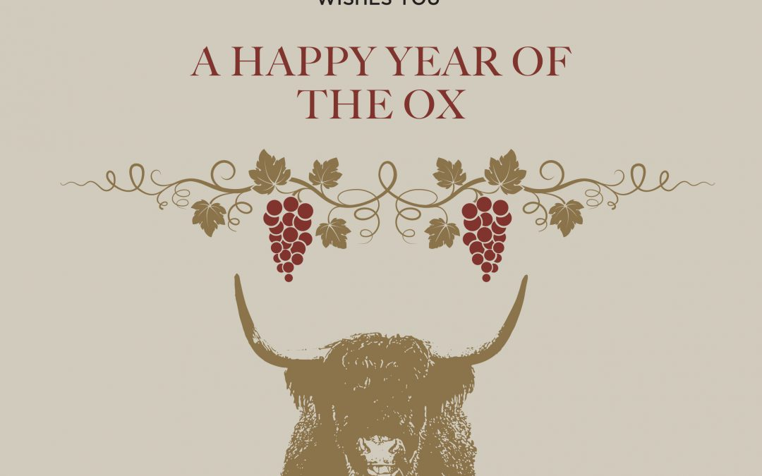 Year of the Ox – First Day of the Lunar New Year by PM
